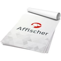 Affischtryck – Valfri storlek (offset från 10 st.)